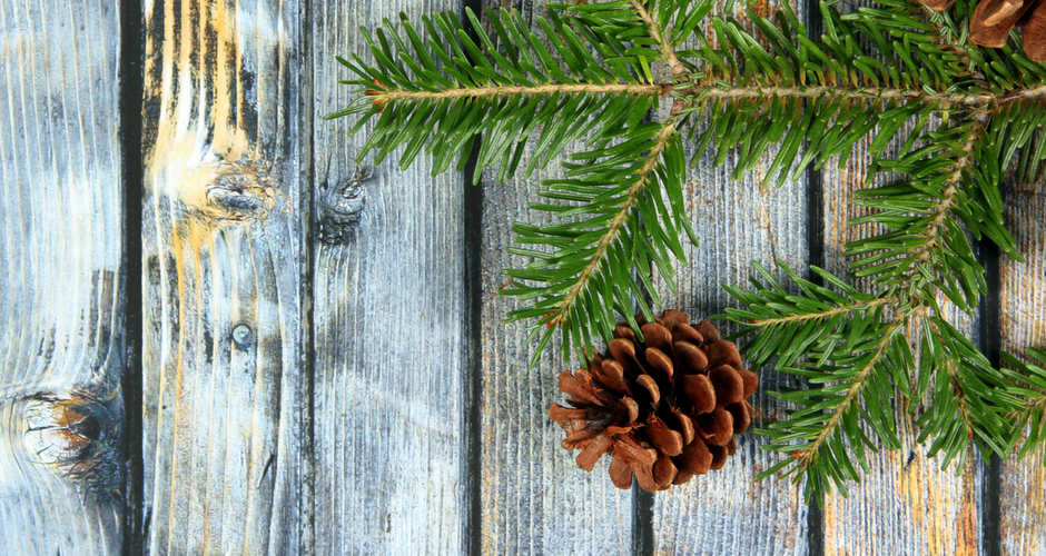 Eco-friendly Tips for a Green Holiday Season